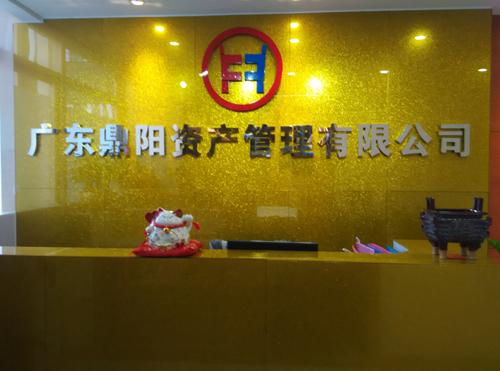 广东鼎阳资产管理有限公司
